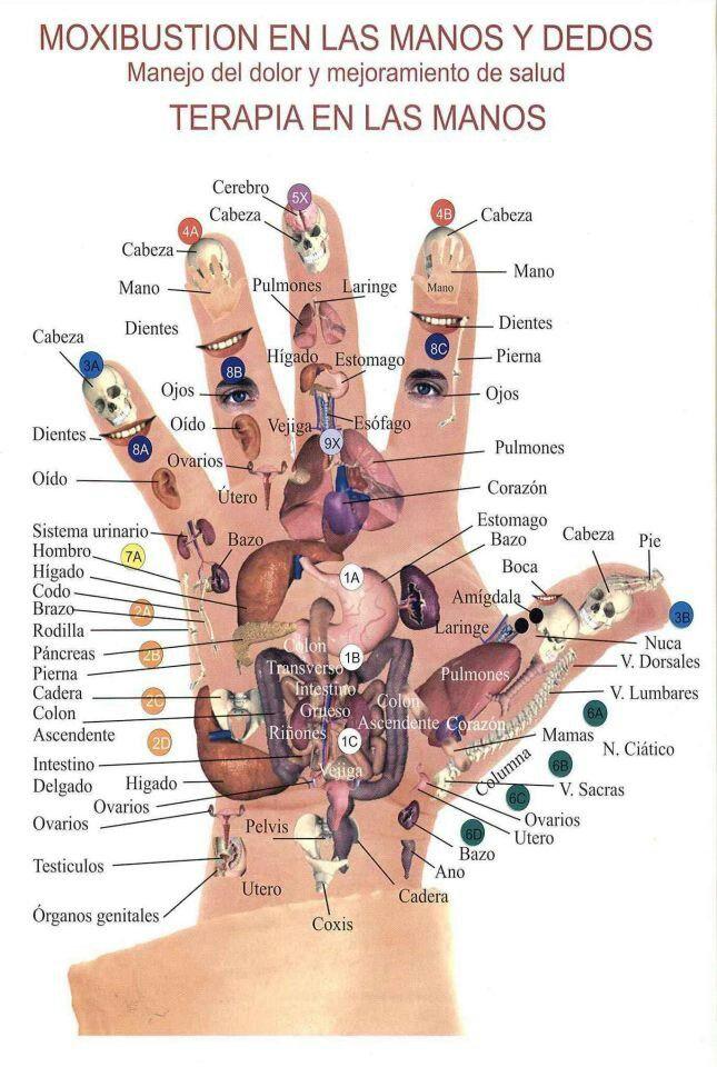 El tratamiento homeopático de la eccema en las manos