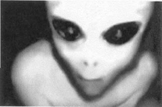 Resultado de imagem para greys extraterrestres